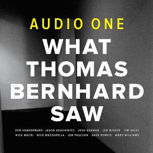 what-thomas-bernhard-saw