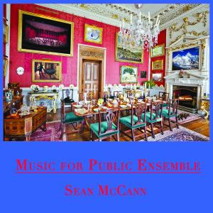 sean-mccann-music-for-public-ensemble