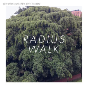 schneider-kacirek radius walk