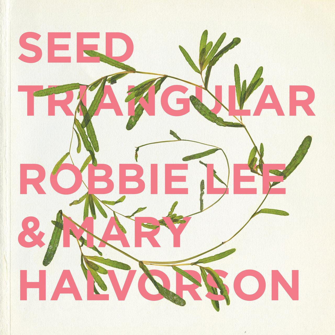 Robbie Lee & Mary Halvorson Seed Triangular |