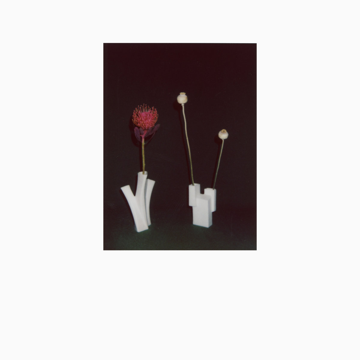 e8cf3ae6 The Flower And The Vessel (Shelter Press, 2019)