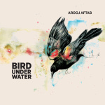 Bird Under Water